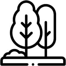 tree-care-icon